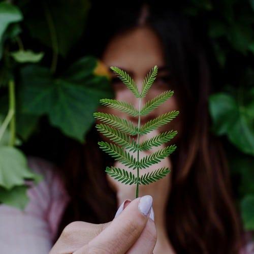 M'illumino di Verde, percorso sul rapporto con la natura