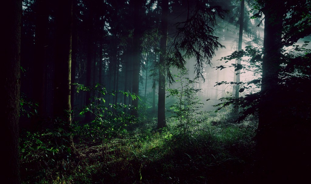 Rievocare i propri paesaggi curativi