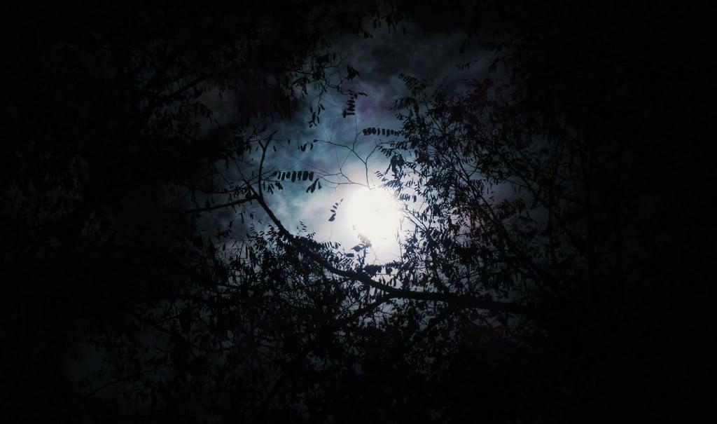 Simbologia delle fasi lunari